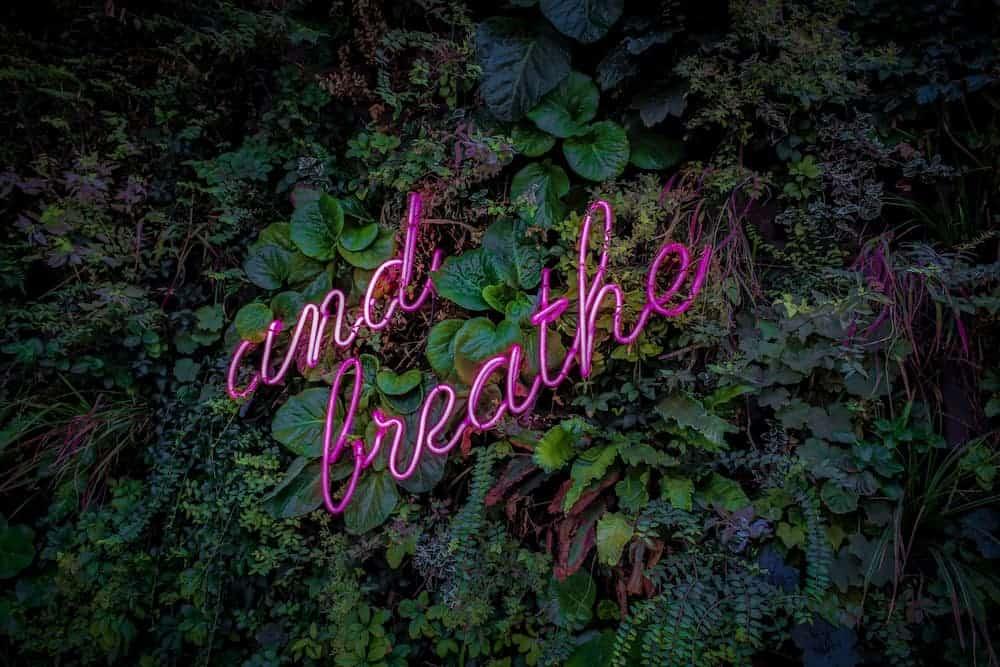 Meditation - Focus on breathing
